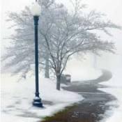Paths lead the Eyes - Snowy Path