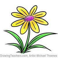 Cartoon Flower Drawing