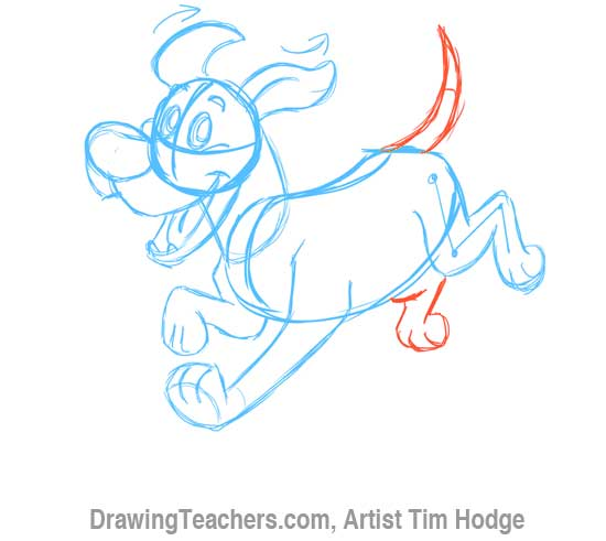 How to Draw a Cartoon dog 8