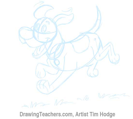 How to Draw a Cartoon dog 11