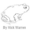 Frog drawing by Nick Warren