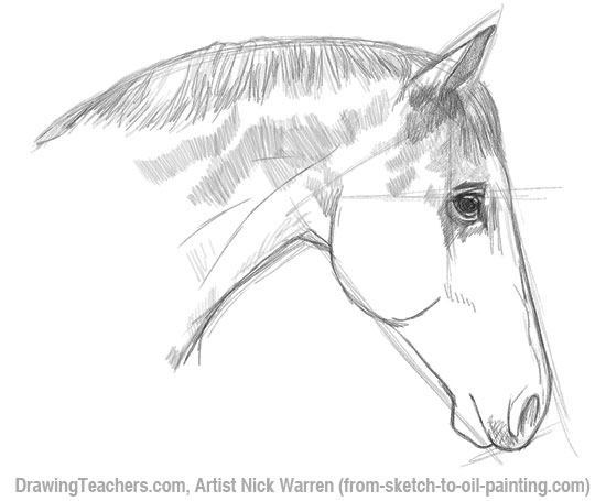 Horses drawings in pencil step by step - photo#4