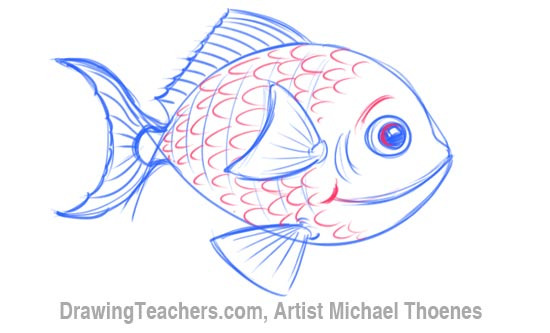 How to Draw a Cartoon Fish 6