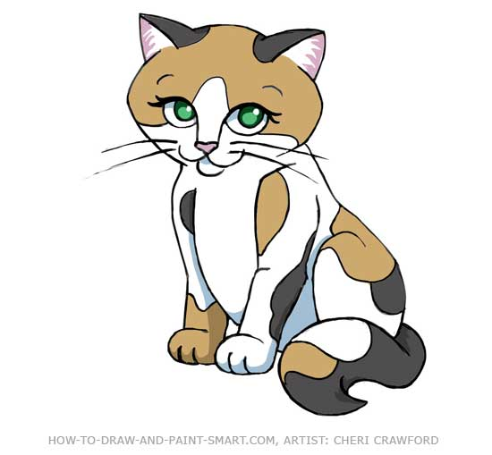 How to Draw a Cat Ccalico