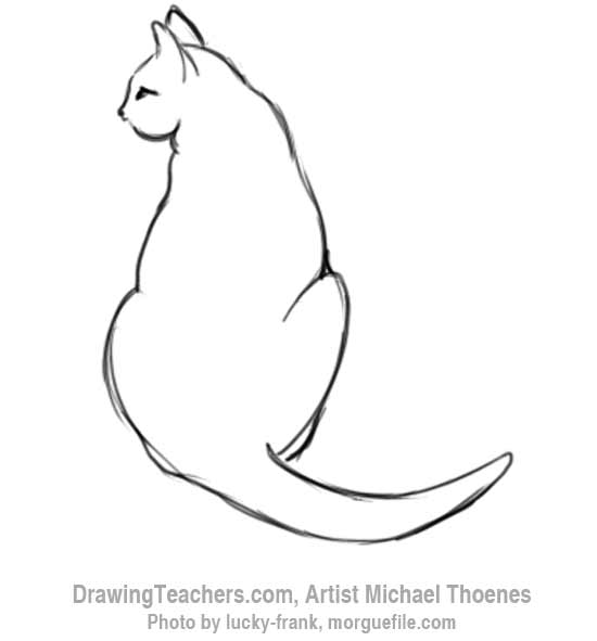 Cats Drawing Cat Sitting Drawing 11