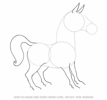 How to Draw a Horse Step 3