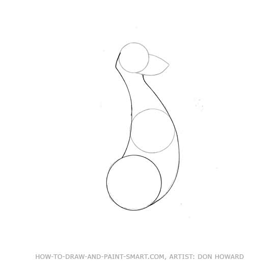 How to Draw a  Kangaroo Step 2