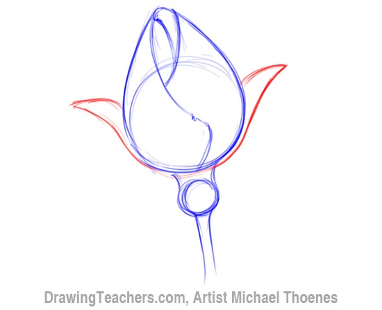 How to Draw a Rosebud 3