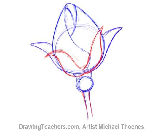 How to Draw a Rosebud 4