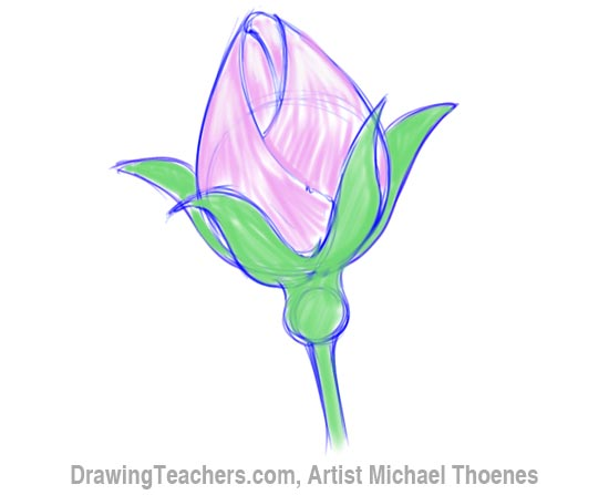 How to Draw a Rosebud 5