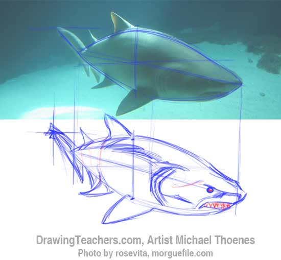 How to Draw a Shark Step 6