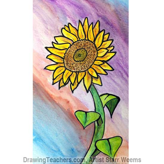 How to Draw a Sunflower 8