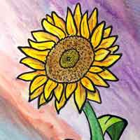 How to Draw a Sunflower 16