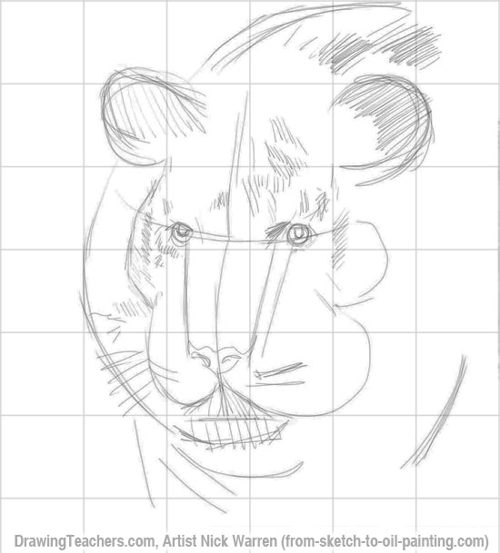 Tiger head drawing tutorial - photo#5