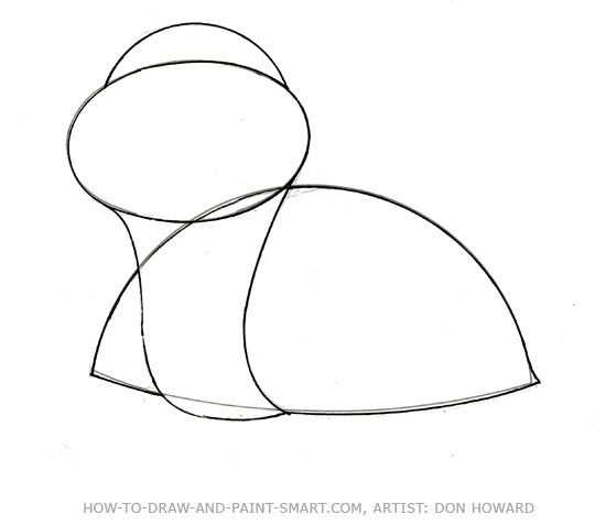 How to Draw a Teddy Bear Step 2