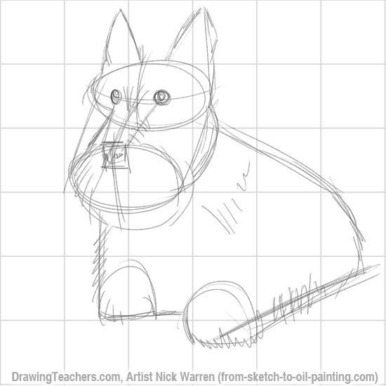 How to Draw a Dogs