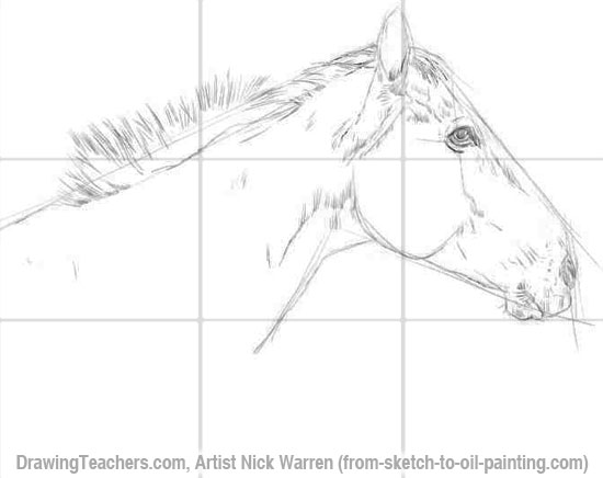 How to Draw Horses 2