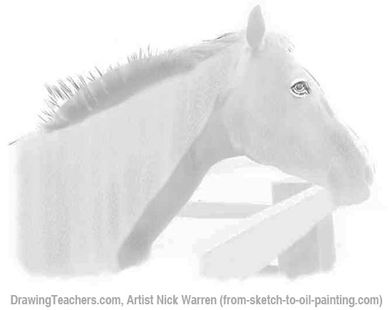 How to Draw Horses 3