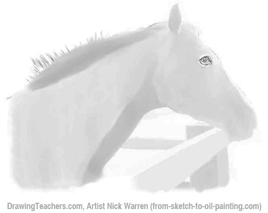 How to Draw Horses 4