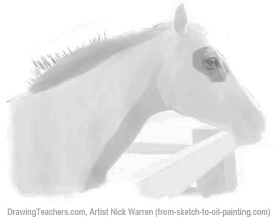 How to Draw Horses 5