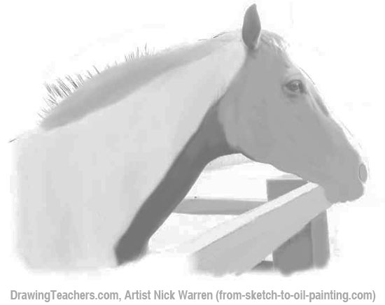 How to Draw Horses 7