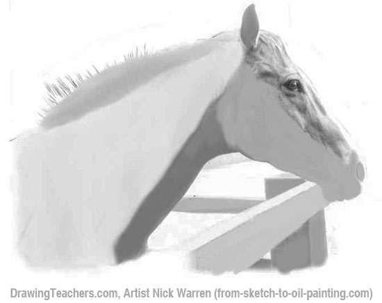 How to Draw Horses 8-9