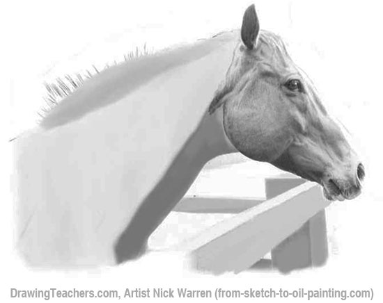 How to Draw Horses Steps 10 to 11
