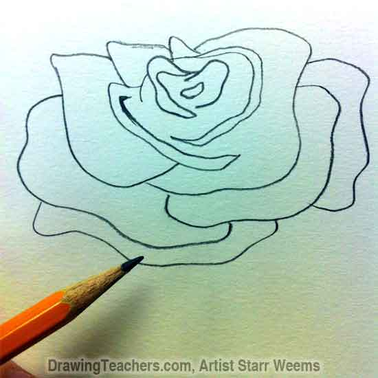 How to Draw Roses 3