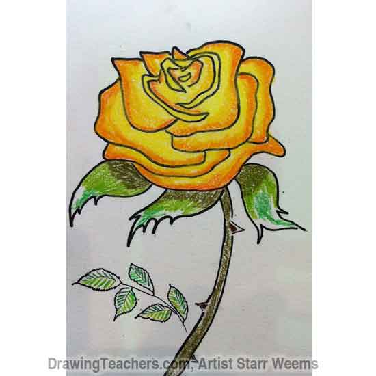 How to Draw Roses 5