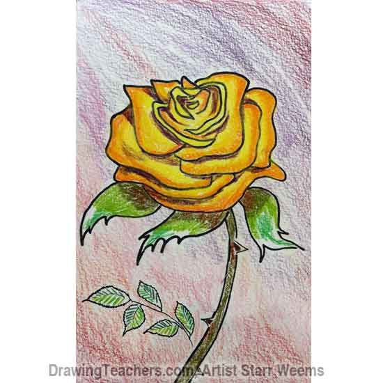 How to Draw Roses 6