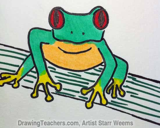 How to Draw a Tree Frog 8