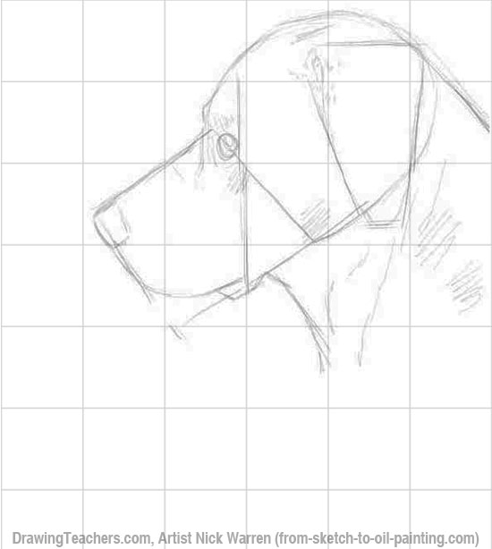 Learn How to Draw Dogs 2