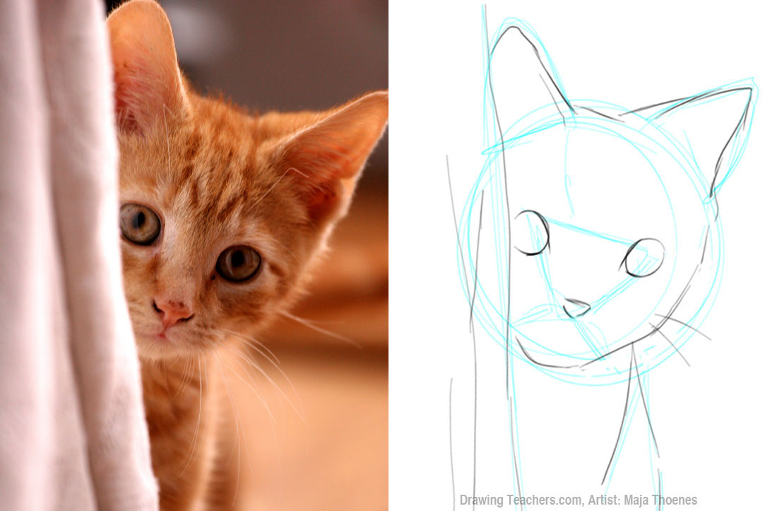 how to draw a cat picture