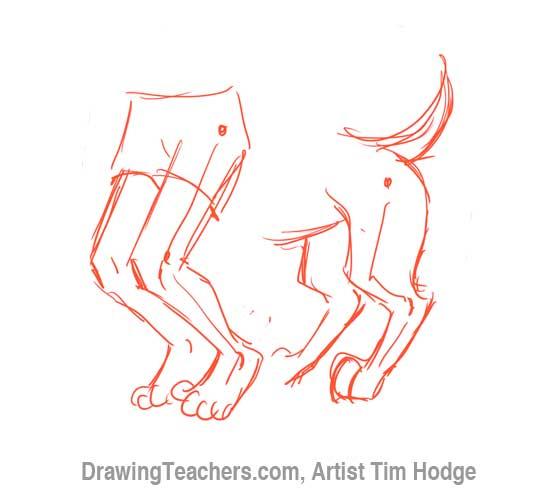How to Draw a Cartoon dog 6