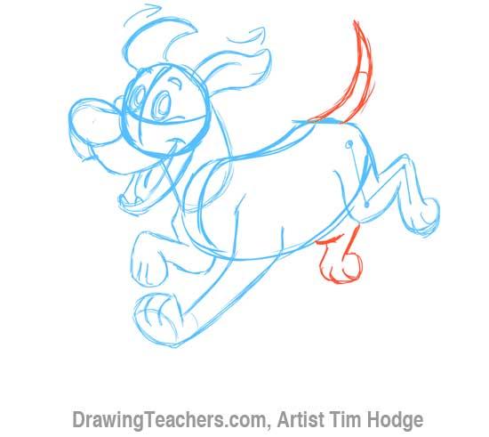 How to Draw a Cartoon dog 8