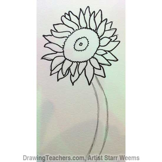 How to Draw a Sunflower 4