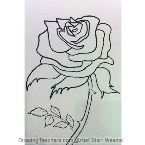 How to Draw Roses 4