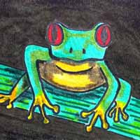 How to Draw a Tree Frog 16