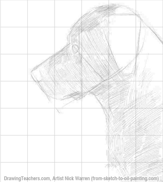 Learn How to Draw Dogs 3