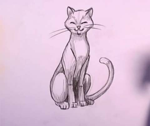 Cat in Pencil 06