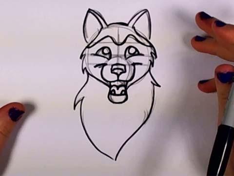 Draw a Husky 07