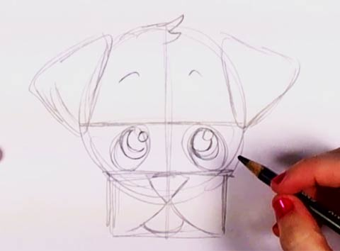 How to draw a puppy face 4