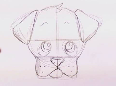 How to draw a puppy face 6