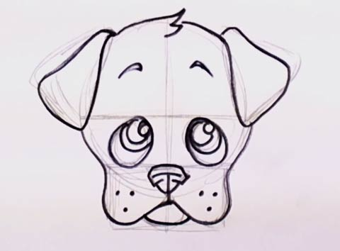 How to draw a puppy face 7