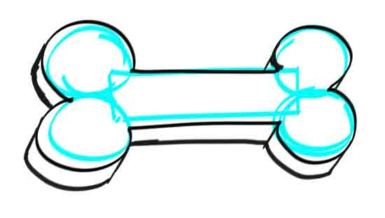 How to draw a dog bone step 5