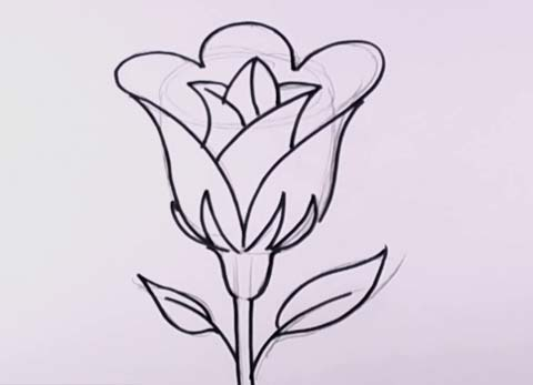 easy to draw roses