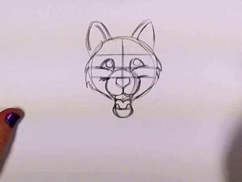 Draw a Husky 06