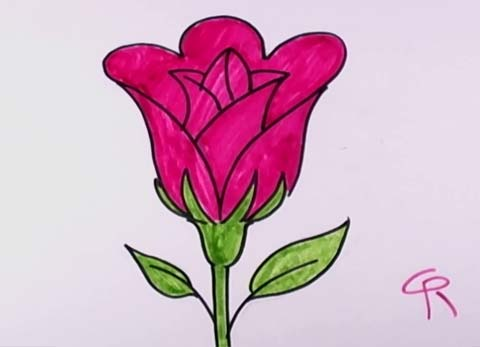 How to draw an open rose an easy rose for kids to draw for How to draw a rose bush step by step